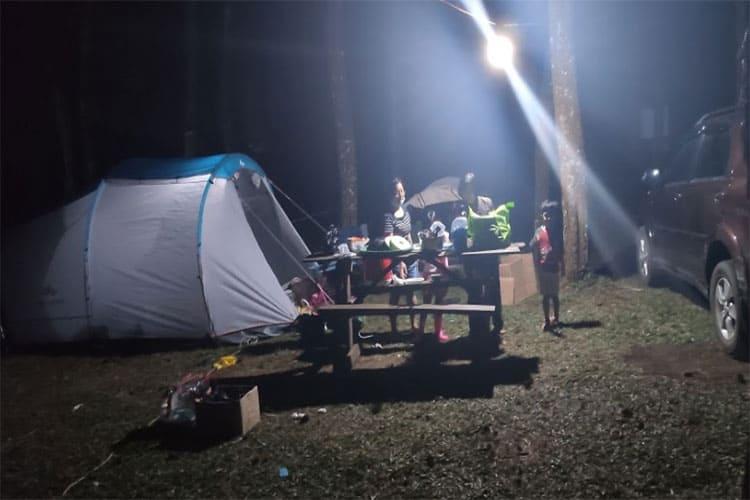 datar pinus camp
