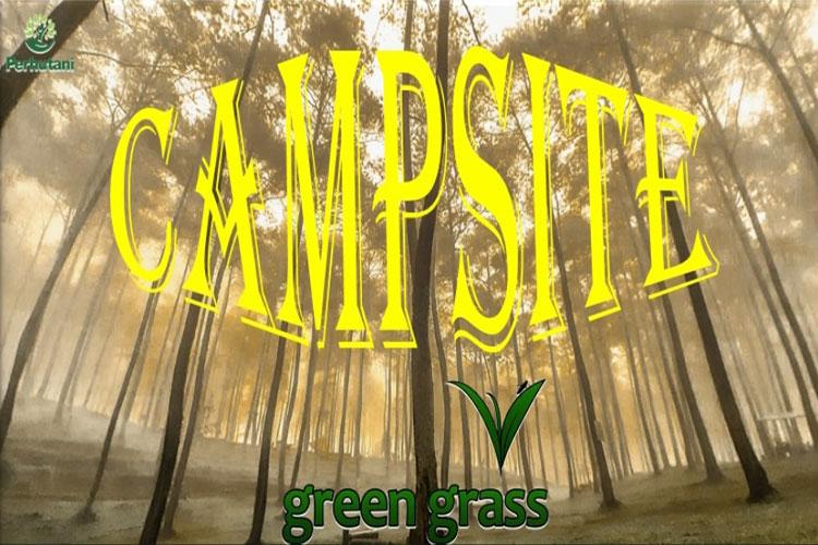 Green Grass Cikole Lembang