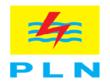 Pt. perusahaan listrik negara