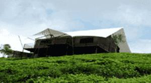 family tent resort